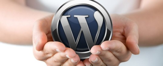 Hľadáme wordpress programátora do tímu